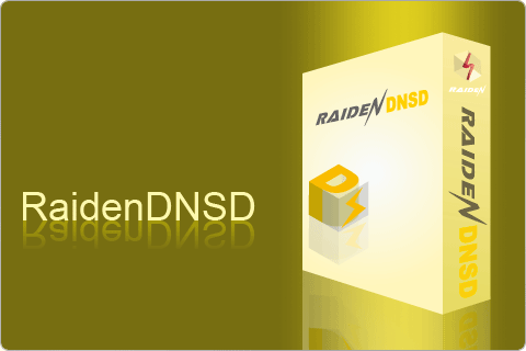 download raidendnsd now!