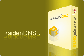 RaidenDNSD - super DNS server